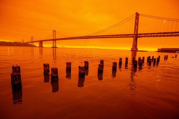 You can donate money to victims of the California, Oregon, and Washington wildfires.