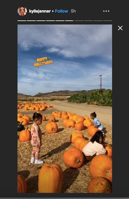 True, Dream, and Stormi play in a pumpkin patch.