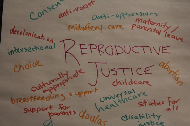 A photo depicting reproductive justice, including the for breastfeeding support, universal health care, disability justice, and increased support for parents.