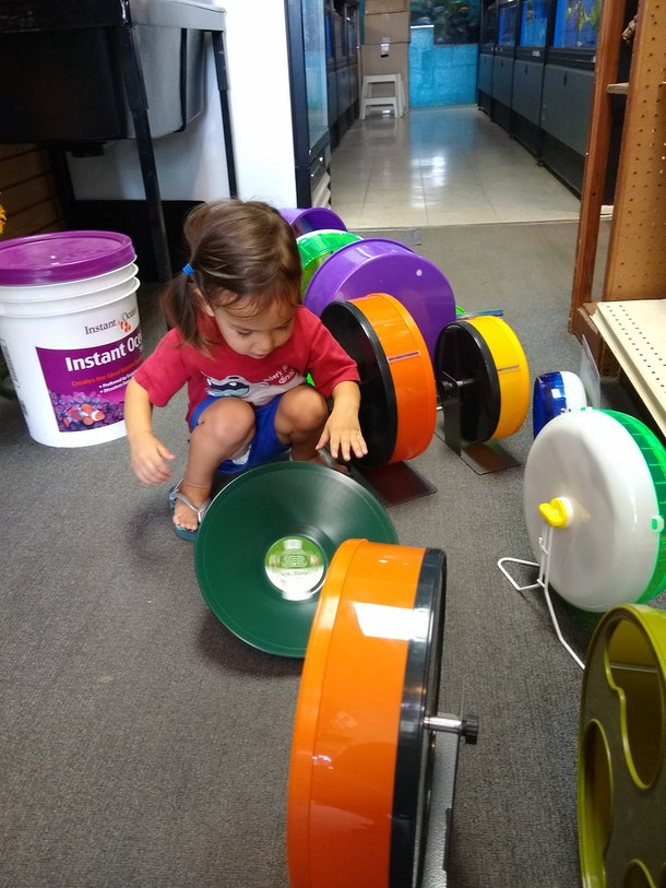 A picture of the writer's child on a special trip to the pet store with Gramma.