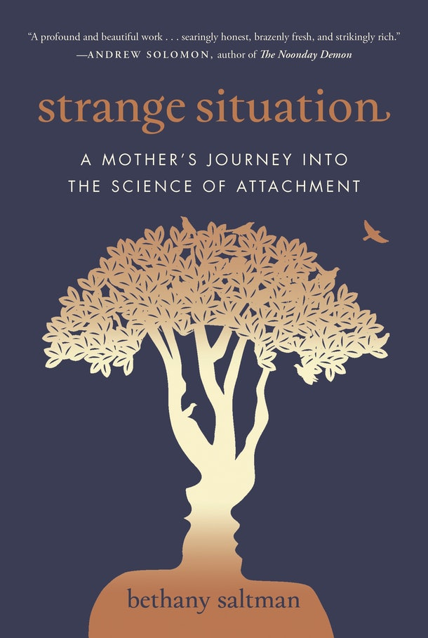 Cover of Strange Situation by Bethany Saltman