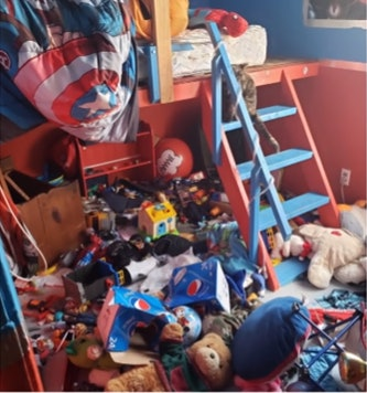 Some kids' playrooms are so messy even the pets are scared.