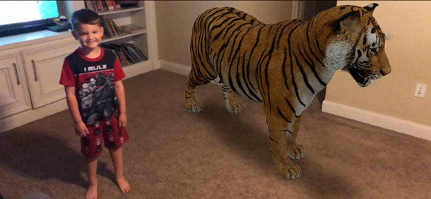 Showing you kids what a tiger looks like standing next to them will be the highlight of your Tuesday at home.