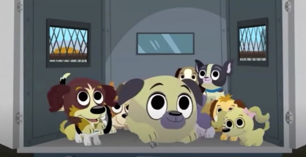 These 'Pound Puppies' are a fun bunch