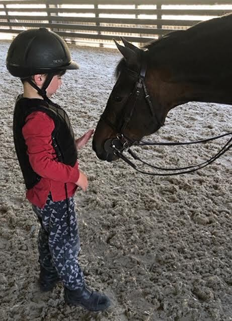 The author's son pets a horse on the nose.