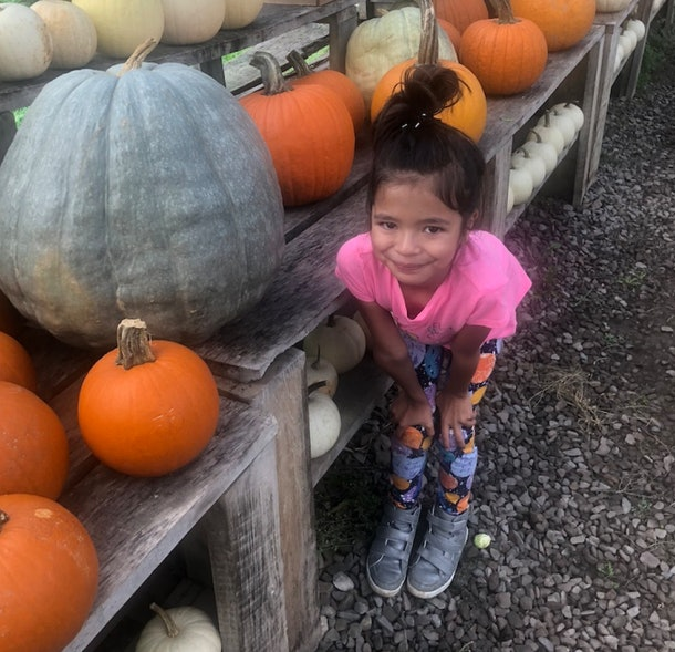Experts say going to pumpkin patches and carving jack-o-lanterns is a totally safe fall activity.