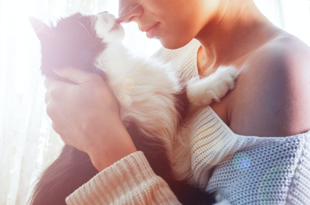 black and white cat licks the nose of a young beautiful woman in a white sweater