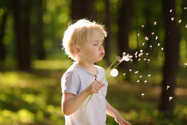 Kids can't make wishes until a certain age, like this young boy blowing a dandelion to make a wish.