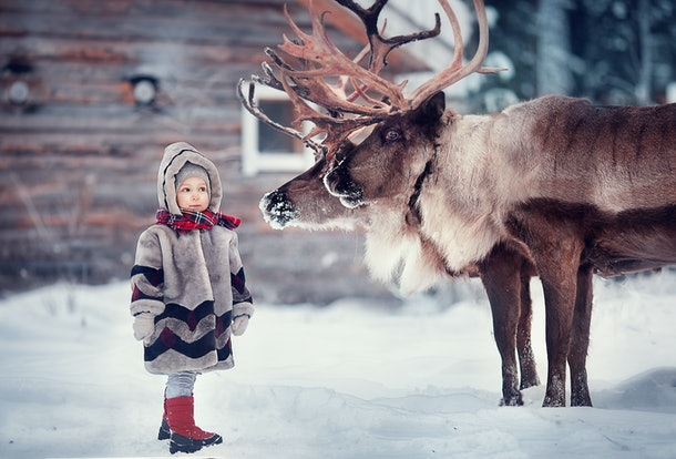 little girl in winter with animals. Image with selective focus and toning.