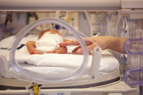premature neonate in a special incubator