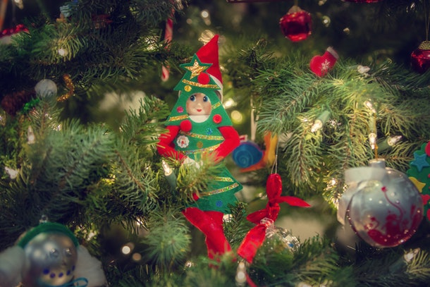 Elf on the shelf hiding in a tree.